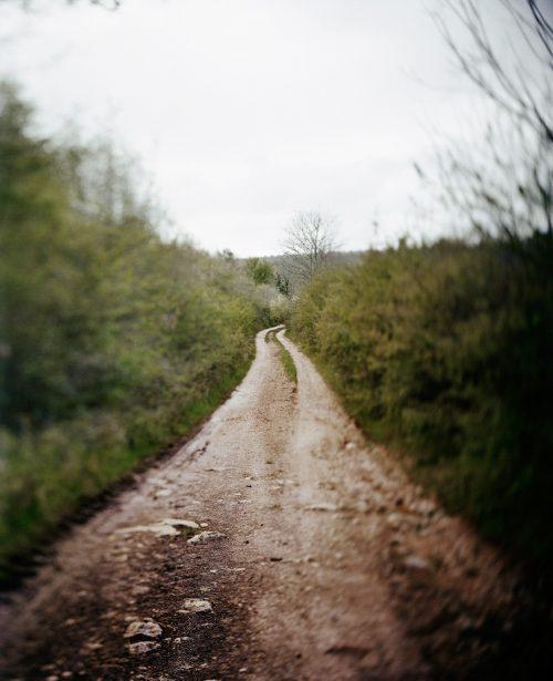 sabinedelcour_chemins-3